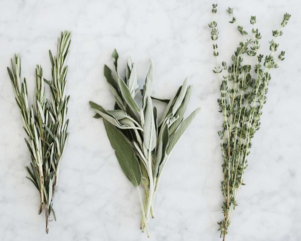 Fresh rosemary, sage and thyme herbs